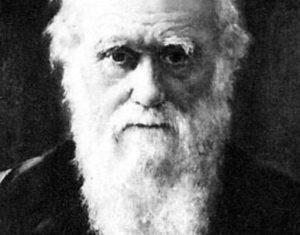 Teoria ewolucji obalona